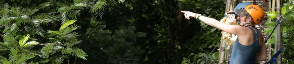 researchers in jungle